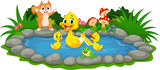 Mother duck and little ducklings swimming in the pond - 119504653