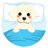 Cute little pet puppy dog ill in bed with thermometer