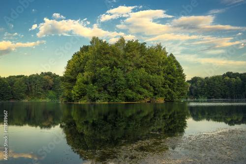 Waldinsel im Vogelsberger See