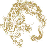 Fototapety Japanese traditional dragon illustration