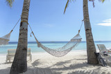Hammock on the Beach in Paradise - 119665020