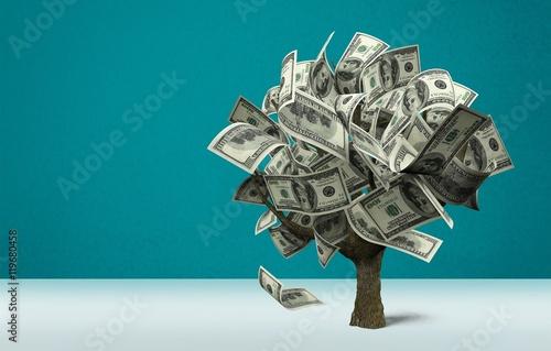Poster Money tree.