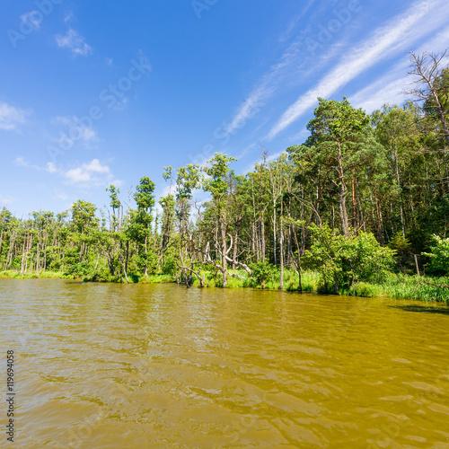 Fotobehang Honing slowinski landscape