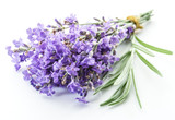 Bunch of lavandula or lavender flowers isolated on white backgro - 119711464