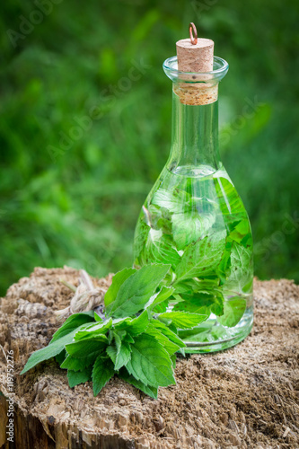 Plakat Helathy and homemade liqueur with mint and alcohol