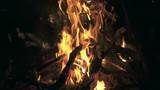 Slow motion shot of bonfire