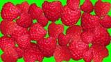 raspberryes stop motion green screen transition