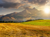 rural field in Tatra mountains  at sunset - 119824465