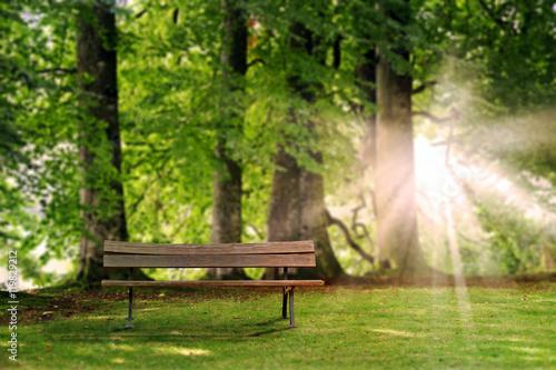 Sitzbank im Wald.