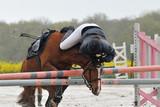 saut d'obstacle en équitation - 119835410