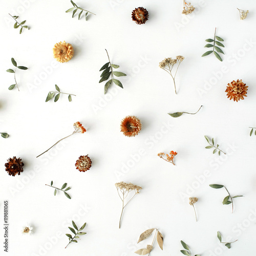 yellow dry flowers, branches, leaves and petals pattern isolated on white background. flat lay, overhead view - 119881065