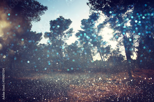 Abstract blurred dreamy woods and glitter bokeh lights © tomertu