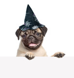 Pug puppy with hat for halloween peeking from behind empty board. isolated on white