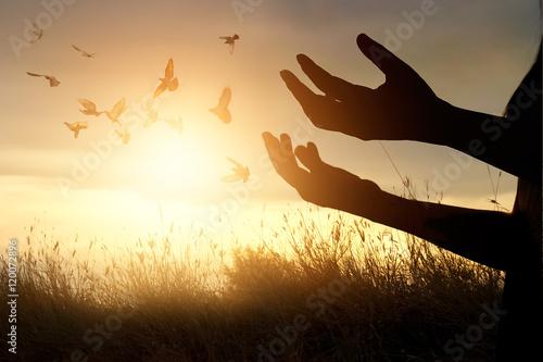 Poster Woman praying and free bird enjoying nature on sunset background