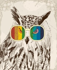 Vector sketch of owls with glasses. Retro illustration