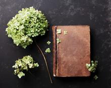 Stilleben med gammal bok och torkade blommor hortensia på svart vintage bord ovanifrån. Flat låg styling.