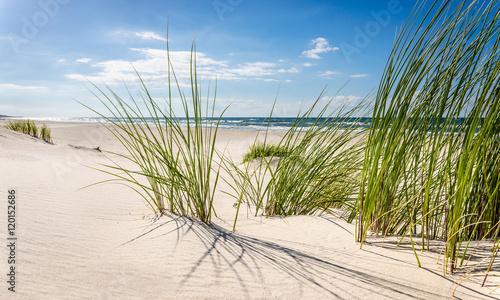 Mrzeżyno, plaża - 120152686