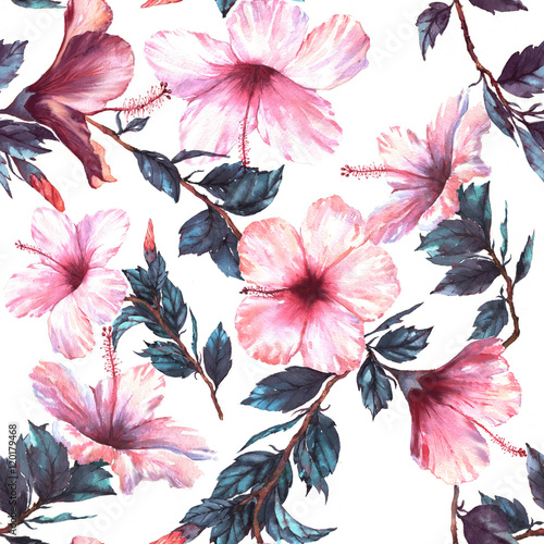 Obraz na Szkle Hand-drawn watercolor floral seamless pattern with the tender white and pink hibiscus flowers. Natural tropical and vibrant repeated print for textile, wallpaper etc