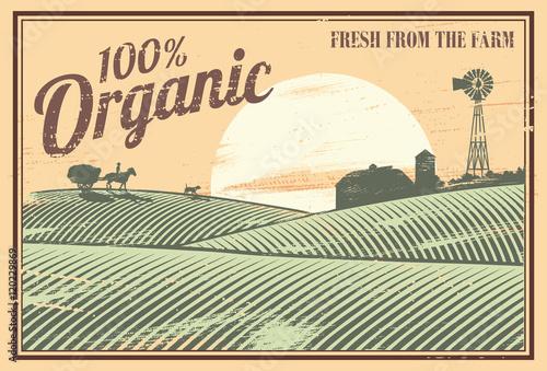 Vintage sign, organic farm