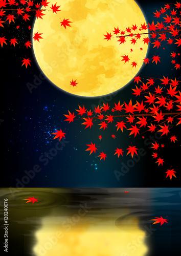 水辺で見る紅葉と月2