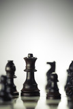 Risk Anticipation Concept, Chess Game