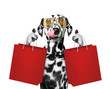 Cute dog goes shopping and sales