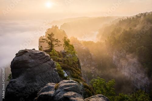 Papiers peints Morning Glory Sandstone rock in national park Saxon Switzerland, Germany, Europe
