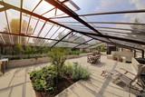 serre dans jardin de particulier en été - 120357002
