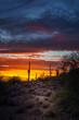 Phoenix Arizona Night Scene after Sunset