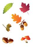 autunno, foglie e frutti