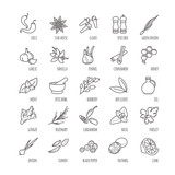 Spices and seasonings vector icons - 120447802