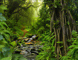 Fototapety Thailand jungle with river