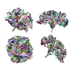 Multicolored flowers hibiscus vintage vector illustration