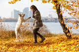 Woman in autumn park playing with her dog
