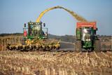 Récolte du maïs en France - 120611053