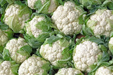 Background with stack of Cauliflower - 120613015