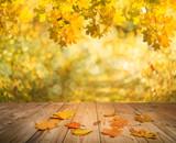 autumn background - 120670064