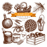 Vector set of hand drawn autumn illustration. Traditional harvest festival design elements. Vintage fall sketch collection on white background.
