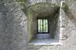Deep Castle Window Well - 120739457