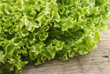 Fresh green lettuce salat on wooden background.