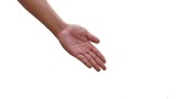 hand presenting isolated