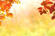Herbst 130