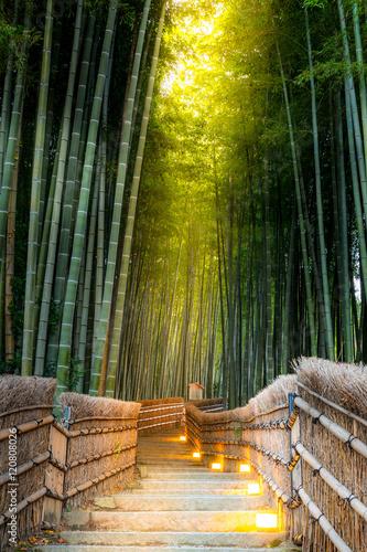 Fotobehang Bamboe Arashiyama Bamboo Forest