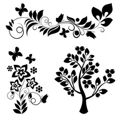 ornamental design elements on a white background