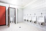 urinal and toilet doors