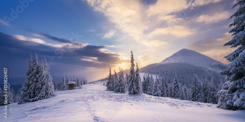 Winter Landscape with a dawn in mountains Poster