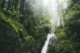 Fototapety waterfall on forest stream in rain