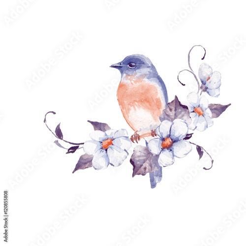 ladny-maly-ptak-z-kwiatami-malarstwo-akwarelowe