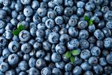 Blueberry. Fresh organic berries macro. Fruit background