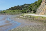 Bolinas Lagoon, California, USA